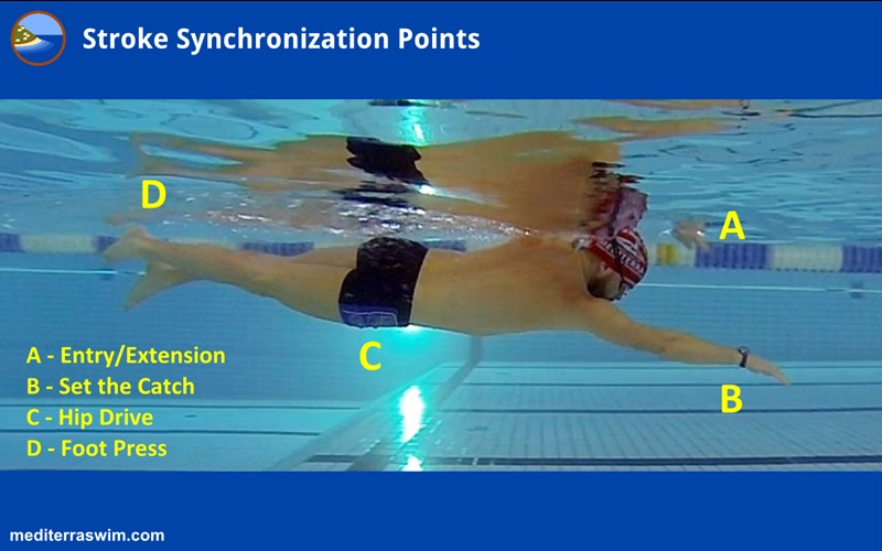 stroke-sync-points