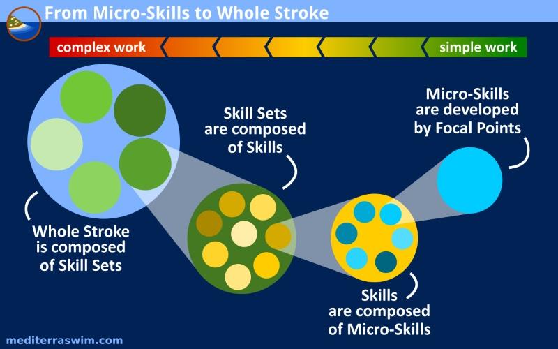 microskills-whole-stroke-b-800x500